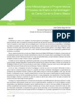 Artigo RPEA 2013, Bago de Uva, Jose´