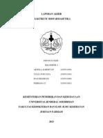 laporan Biofar piroksikam.docx