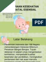 Pelayanan Neonatal Esensial