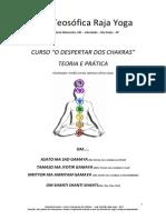 Apostila - O Despertar Dos Chakras - 2013