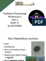 Praktikum Parasitologi Pertemuan 1 Avicenna
