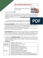 IDENTIFICACIÓN DE PROTEÍNAS