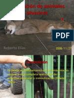 Contención Fauna Silvestre