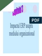ERP Capitolul3
