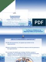 Capitulo_1_Comportamiento_Organizacional