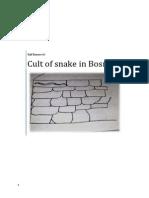 Cult of Snake in Bosnia
