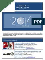 APECES - Newsletter N 14. Diciembre de 2013
