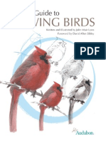 Laws Guide to Drawing Birds Sample
