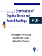 Hernia and Scrotum
