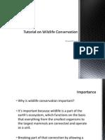 Tutorial on Wildlife Conservation