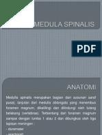 Tumor Medula Spinalis