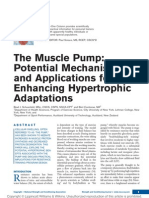 The Muscle Pump Potential Mechanisms