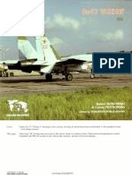 Lock on Sukhoi Su-27 walk around