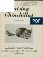 Raising chinchillas (1956)