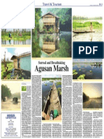 Surreal Agusan Marsh by Jojie Alcantara Published Dec 28 2010 Manila Bulletin