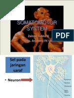 0910 - GERAK (08) Dr Zainuri_Motorneuron