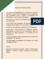 REPORTE_DE_INVESTIGACION