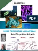 Diapos Bacterias