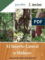 Injertación Lateral_Manual
