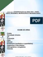 Análise e Interpretação da Urina Tipo 1