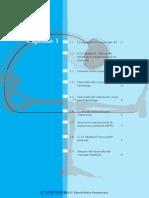 El Concepto Maitland 2010.pdf