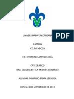 Diferencias entre vértigo central y periférico lechuga