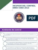17 Principios Del Control Interno Coso 2013