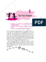 Tiny Teacher