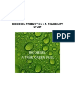 16415641 Biodiesel Feasibility Study by RicCapistrano