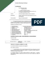 1_informe Final Enero Del 2009