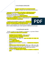 Subtema H2 e H3 (Manual 8-_ Ano). (1)