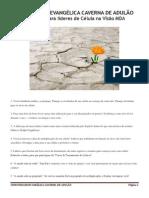 0005 - 130 dicas para líderes de Célula na Visão MDA