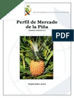 Perfil Pina[1]