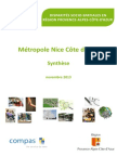 Synthese Metropole Nice Cote Azur-2013!11!22