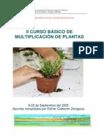 II Curso Multiplicacion Plantas