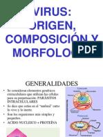 S-12 Virus Morfologia_clasi