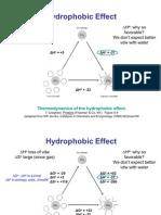 50783767 m Hydrophobic
