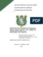 PRODUCCION DE PLANTONES DE PALTO.doc