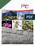 17. PERU PLAN 2040