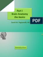 Introduction to Brain Anatomy