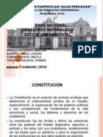 Constitucion y Defensa Nacional