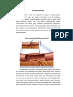 Intussuceptio usus (1)