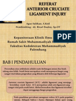 Referat Acl Injury