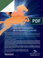 Patient Treatment Guide Spanish