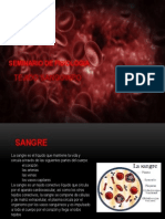 Seminario de Fisiologia - Sangre