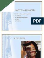CONVITE À FILOSOFIA - síntese