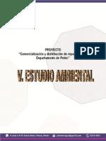 V. Estudio Ambiental Smart