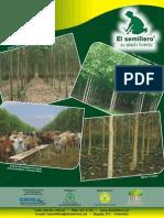 Catalogo Semillero 2012