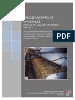 Proceso de Flotacion de Metales Oxidados