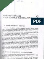 Tema 2. Amplitud y Alcanze de Los Servicios de Consultoria
